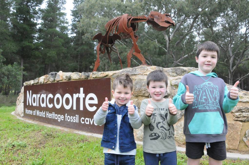 THUMBS UP: Loving South East attractions is Charlie Haynes, 4, Archie Bennett, 5 and Logan Bennett, 7. Photo: Taylor Harvey